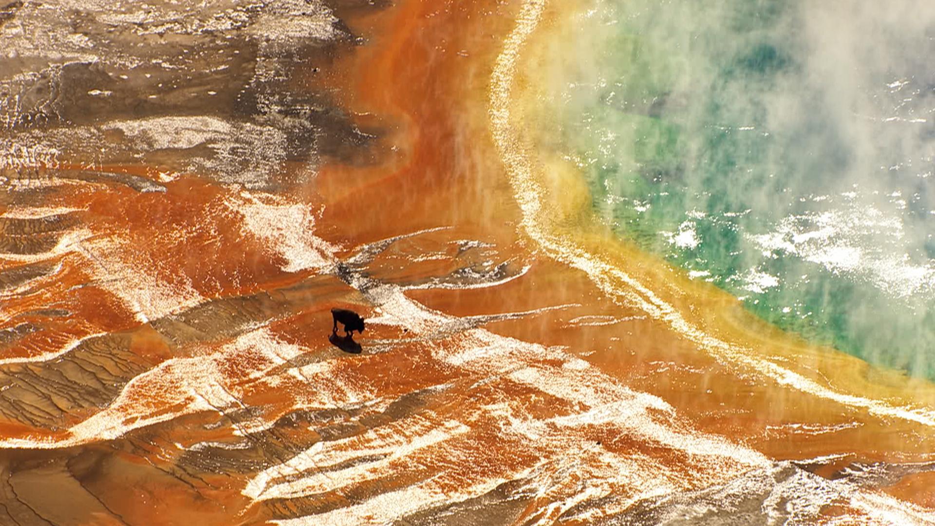 Yellowstone-Deutsch_0083