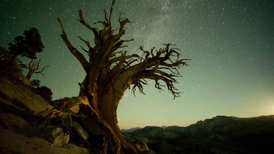 Yosemite-bei-Nacht